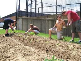 gardening 3-27