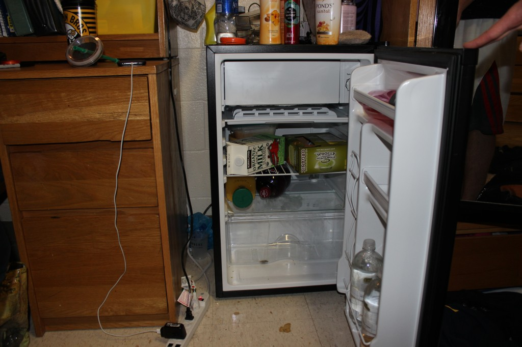Yes, that is mold at the bottom of the fridge.
